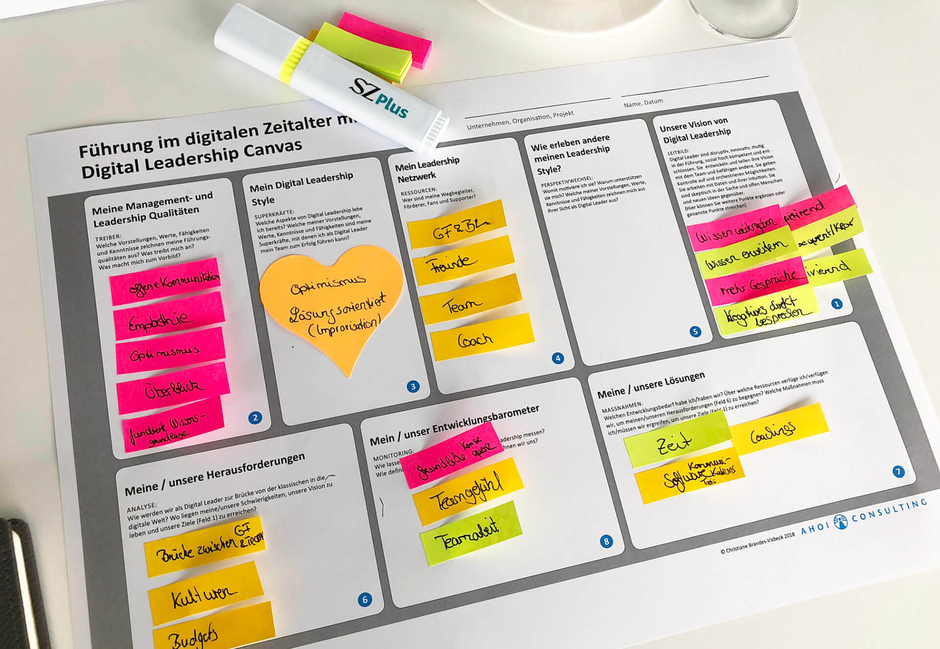 Digital Leadership Canvas - Christiane Brandes-Visbeck
